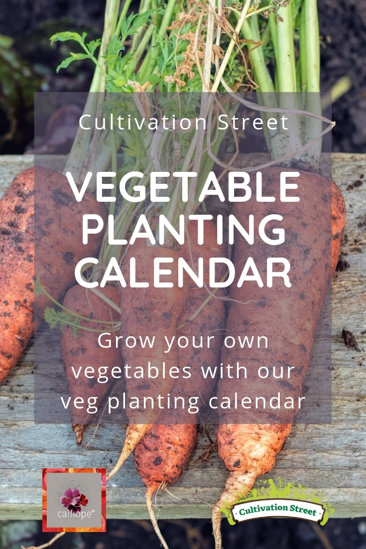 Cultivation Street grow your own veg planting calendar