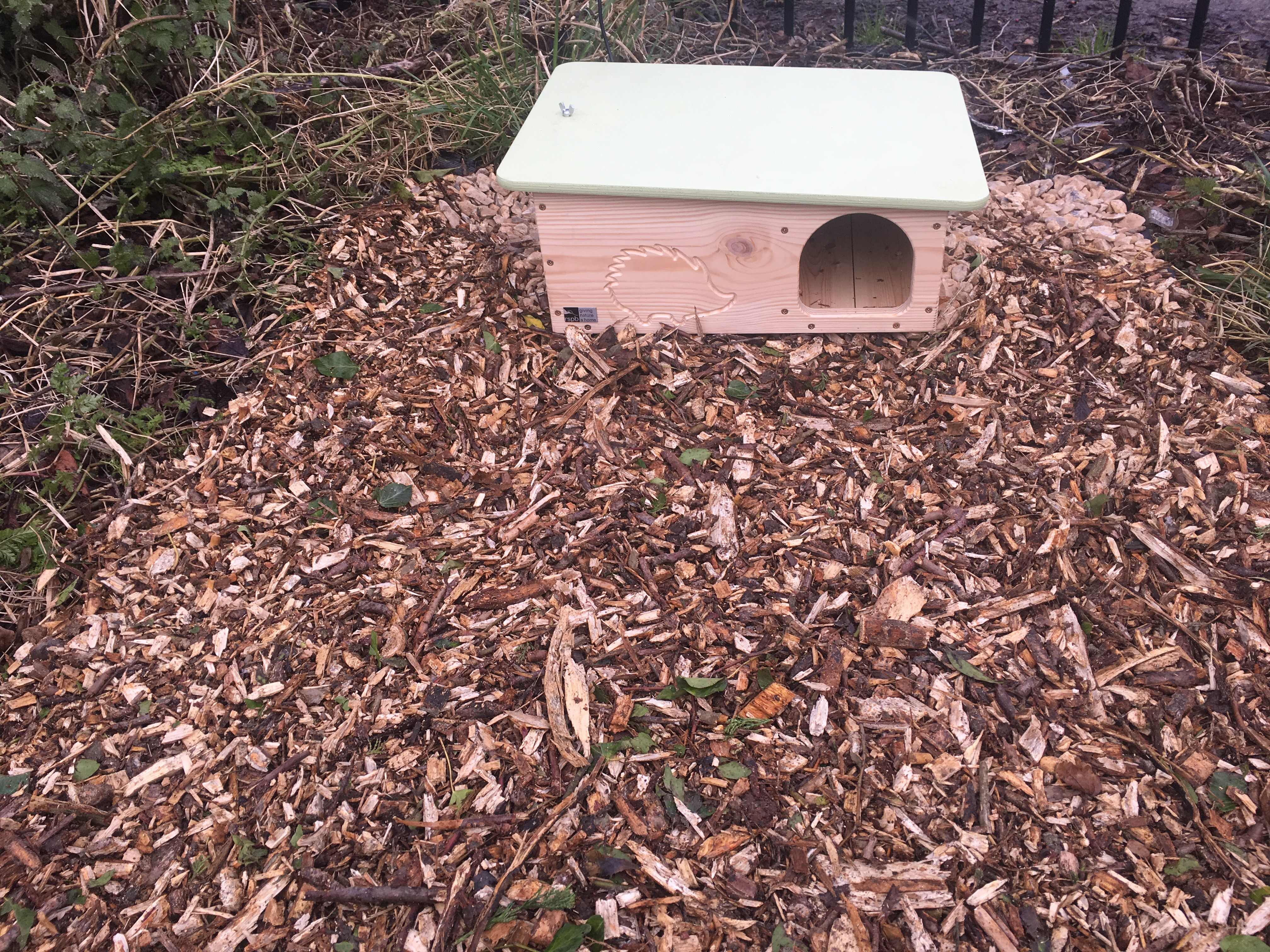 Hedgehog hut