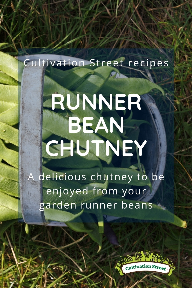 Cultivation Street recipes, runner bean chutney, a delicious chutney to be enjoyed from your school or community garden or allotment runner beans