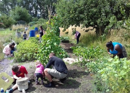 community volunteers and children working in Welsh House Farm Green Grafters garden