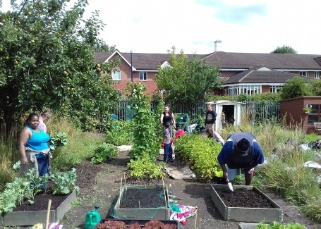 volunteers working on Welsh House Farm Green Grafters allotment