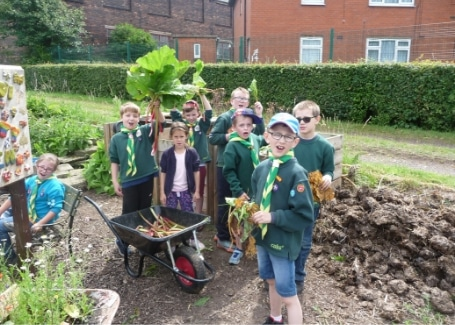 Cubs working at Root 'n' Fruit enjoying the Rhubarb harvest