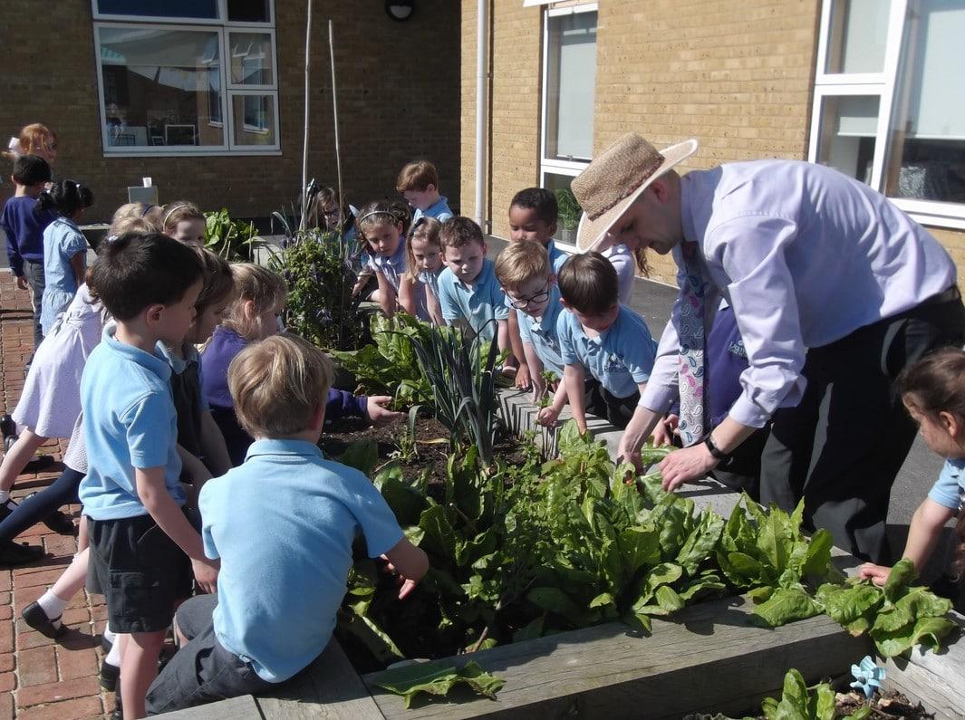 Damers Garden planting_ (002) resize