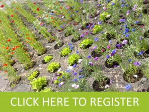 Garden Register Button