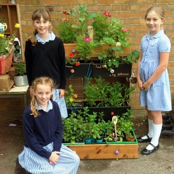 St Albans Primary School girls in their Cultivation Street Garden