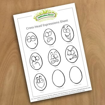 1 Expression Sheet Draw face on egg cress heads Cultivation Street Resource How To Guide Activity