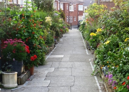 Rockcliffe Avenue Community Front Gardens, entered into the Cultivation Street competition
