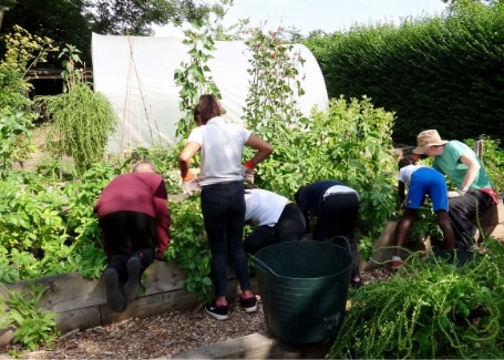 Volunteers at Tinsley Allotment, Shortlisted in the 2018 Cultivation Street Competition in Communities and Calliope Colour My Life