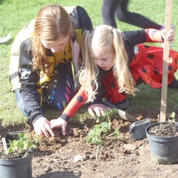 St Alban's Children gardening in their Cultivation Street Garden
