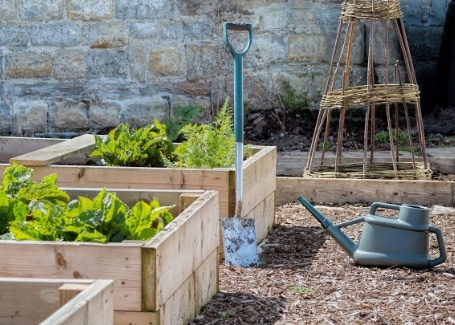 Cultivation Street Tips for March, maintenance including raised beds