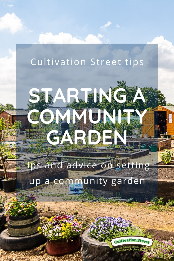 Cultivation Street tips pinterest pin, Starting a Community Garden, tips and advice on setting up a community garden
