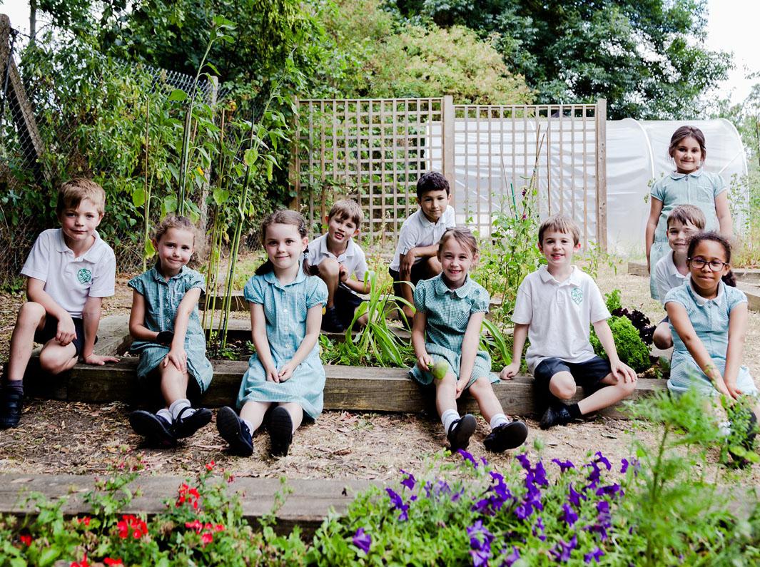Damers-Garden-planting_-002-resize