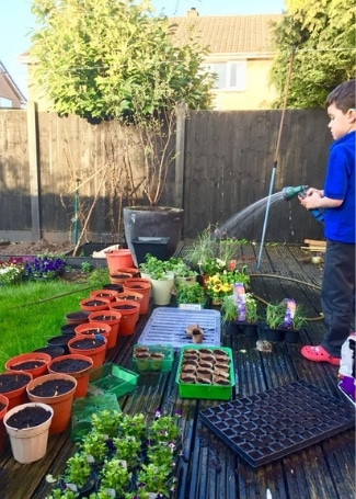 Essington in Bloom, child watering their Cultivation Street garden