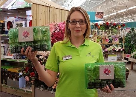 Sophie Lyall, Haskins Cultivation Street ambassador 1