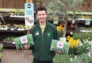 Cultivation Street Stories, Old Railway Line Garden Centre Matthew Lewis and his Calliope geraniums