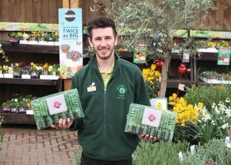 Cultivation Street Stories, Old Railway Line Garden Centre Matthew Lewis with his Calliope geraniums