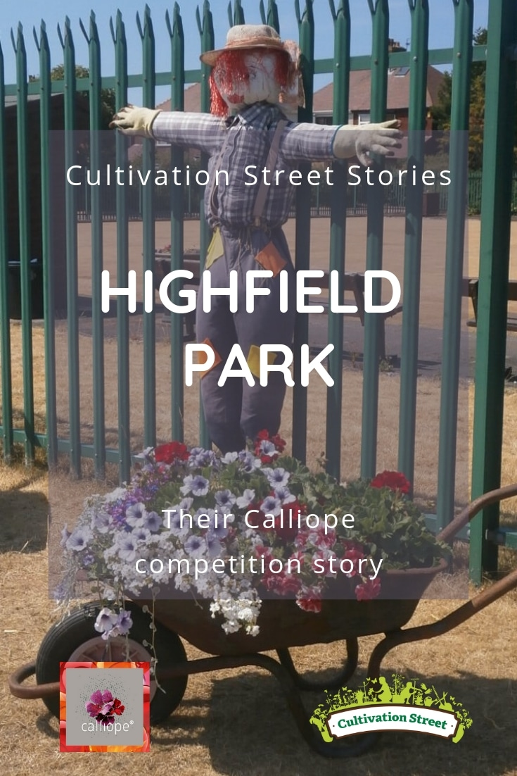 Cultivation Street Story of Highfield Park's Calliope Colour My Life entry in the 2018 Cultivation Street competition