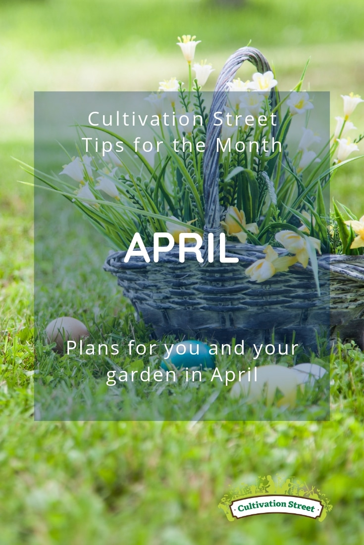 Cultivation Street tips for the month of April, plans for you and your garden in April including Easter activities and planting