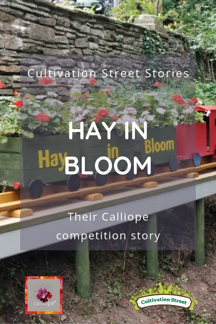 Hay in Bloom their Cultivation Street Calliope competition story
