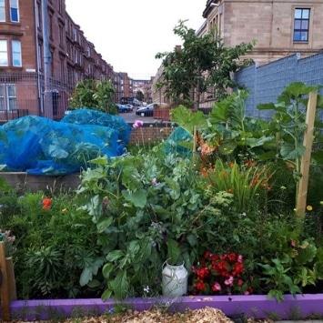 Includeme2 Allotment Angels Cultivation Street beautiful garden