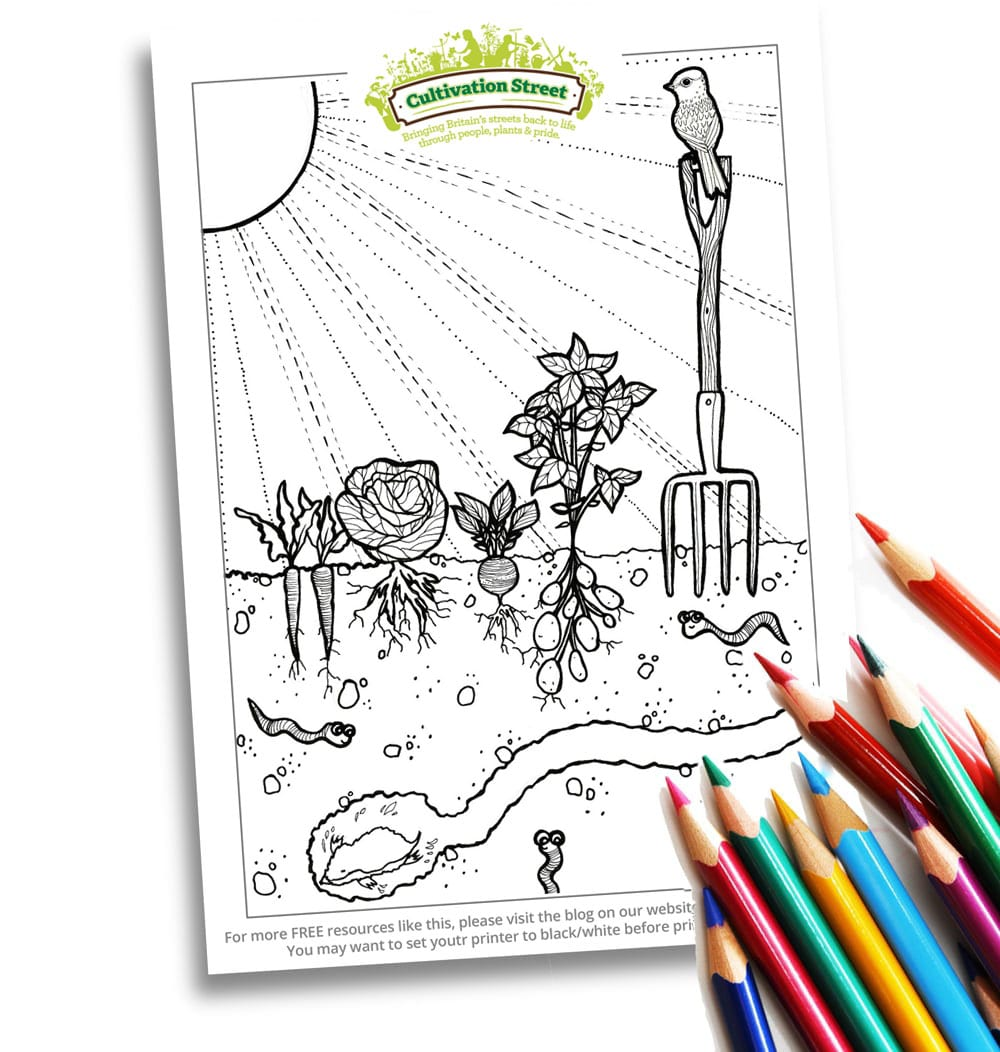 Body-Image- Colouring Page Cultivation-Street Veg plot
