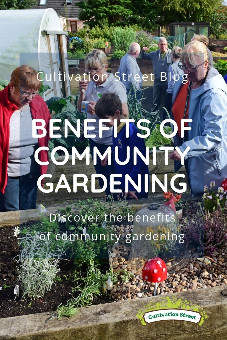 Benefits Of Community Gardening Cultivation Street