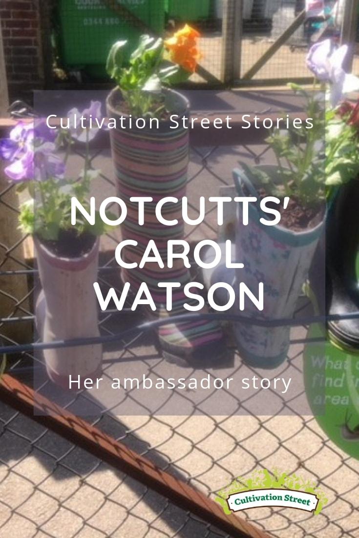 Cultivation Street Stories, Notcutts' Carol Watson, her garden centre ambassador story
