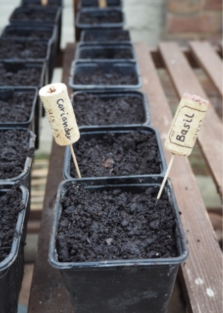 Cultivation Street blog, make your own plant markers, quick and easy ideas to label up your garden including using corks