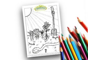 Feature-Image- Colouring Page Cultivation-Street Veg plot