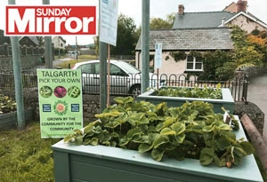 Sunday Mirror Blog Post feature image Telgarth