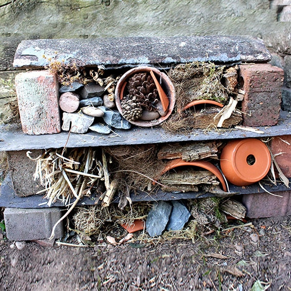 Bug hotel activity cultivation street community school gardens network images 1