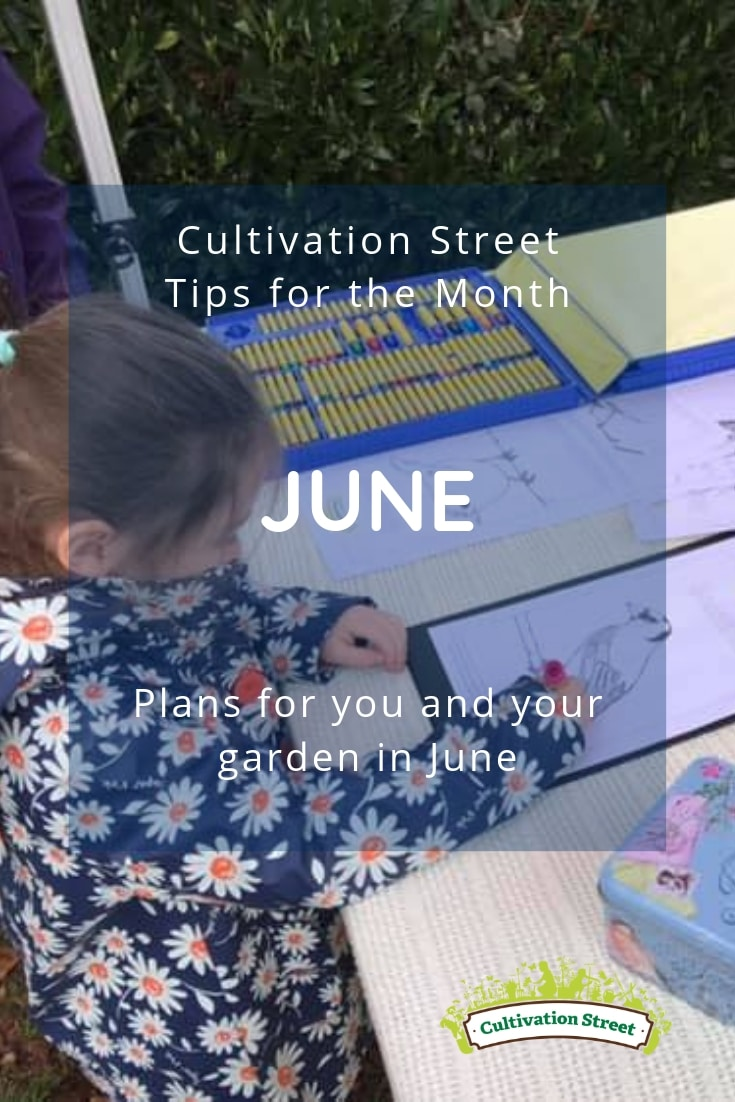 Cultivation Street gardening tips for June, plans for you and your garden in June