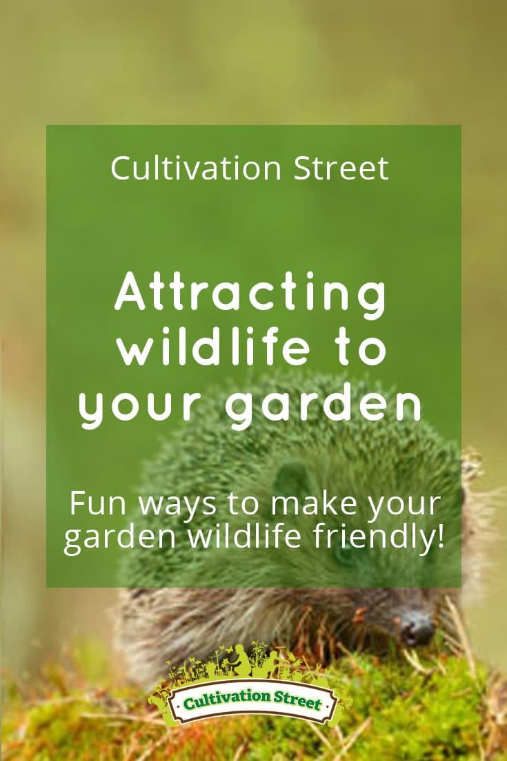 Pin 4 attracting wildlife Cultivation Street garden community school