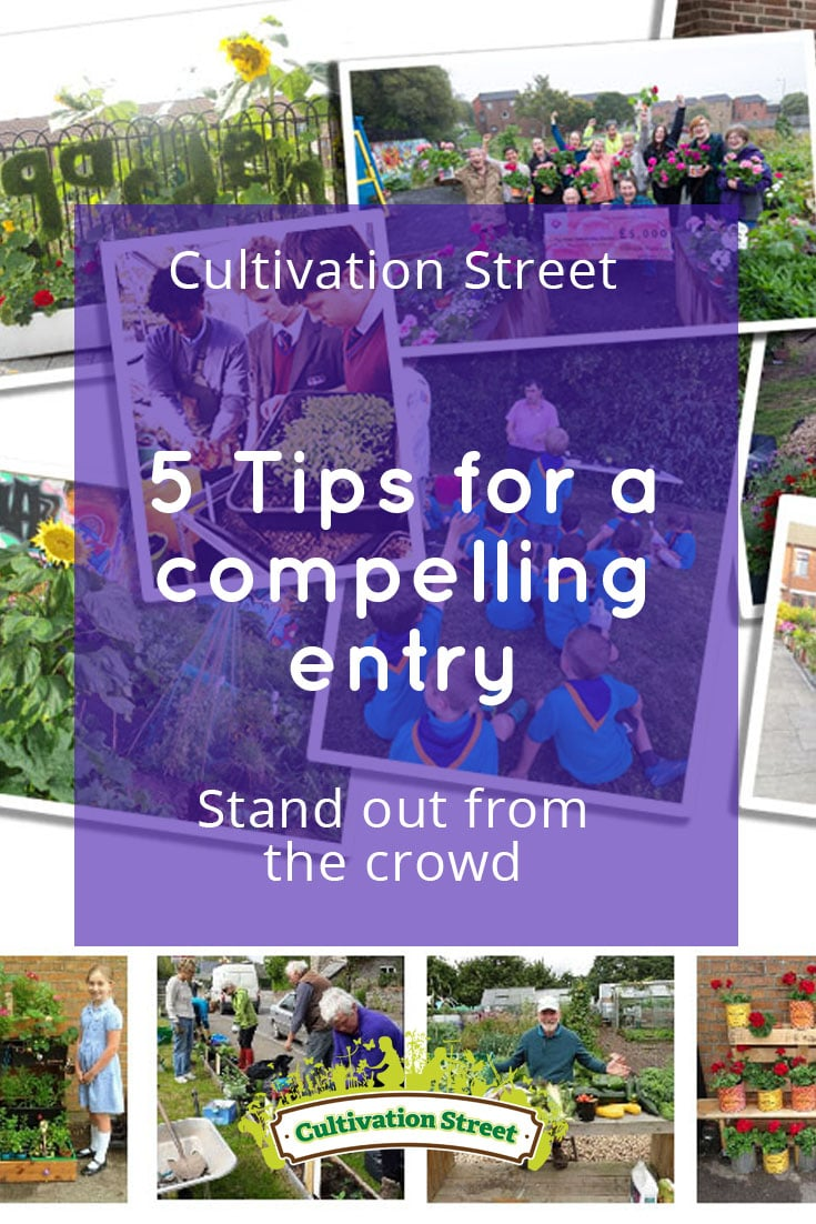 Pin artowrk Cultivation Street Blog Compelling Entry