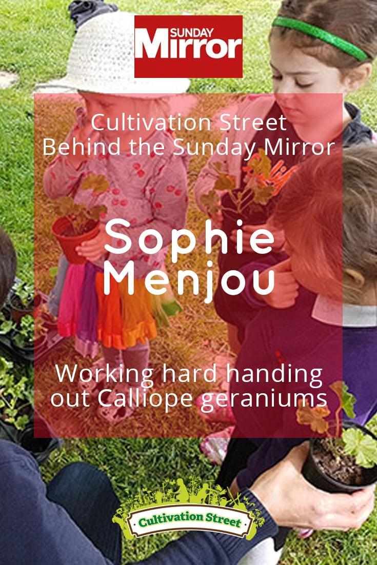 Pin artowrk Cultivation Street behind sunday mirror