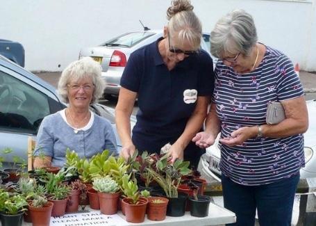 Sandown Castle Community Garden plant sale fundraising for their Cultivation Street garden