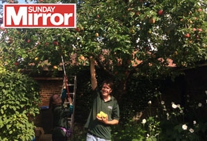 Behinf the Sunday Mirror Blog Post feature image Foirty Hall Orchard