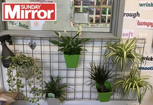 Behinf the Sunday Mirror Blog Post feature image Sunshine Graden Centre