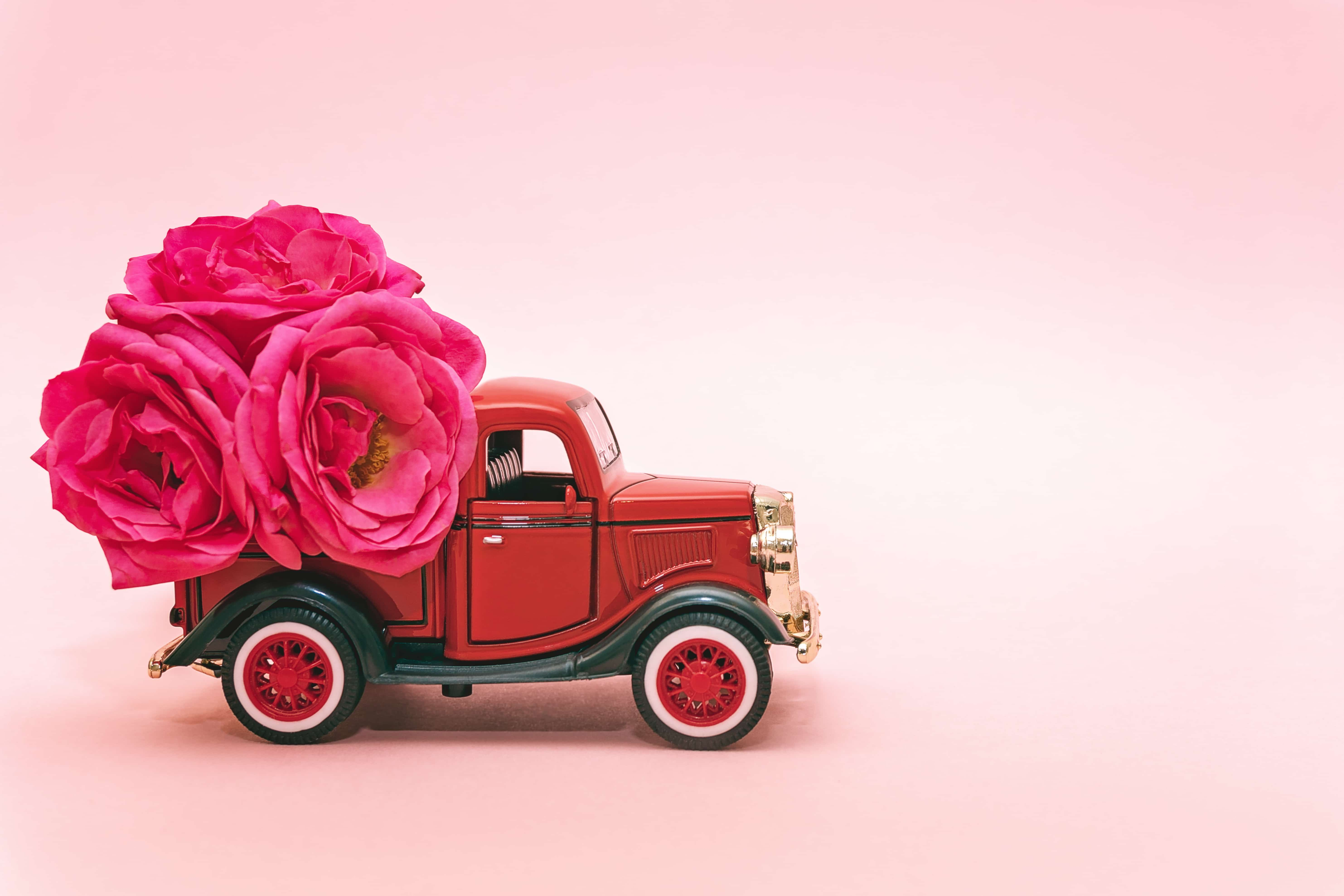 Red toy truck delivering bouquet of rose flowers on pink background. February 14, Valentine's day, 8 March, International Women's Day. Flower delivery. Copy space.