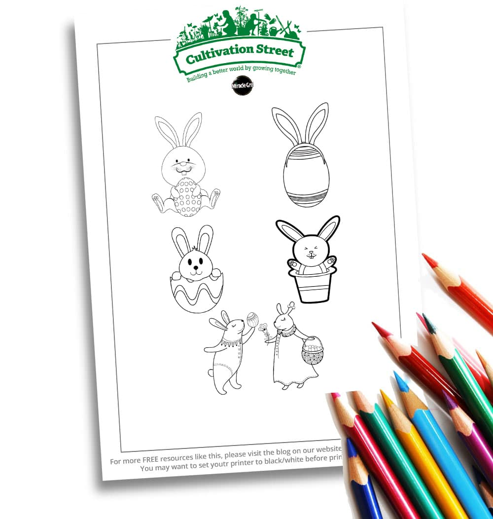 Easter Bunny Website