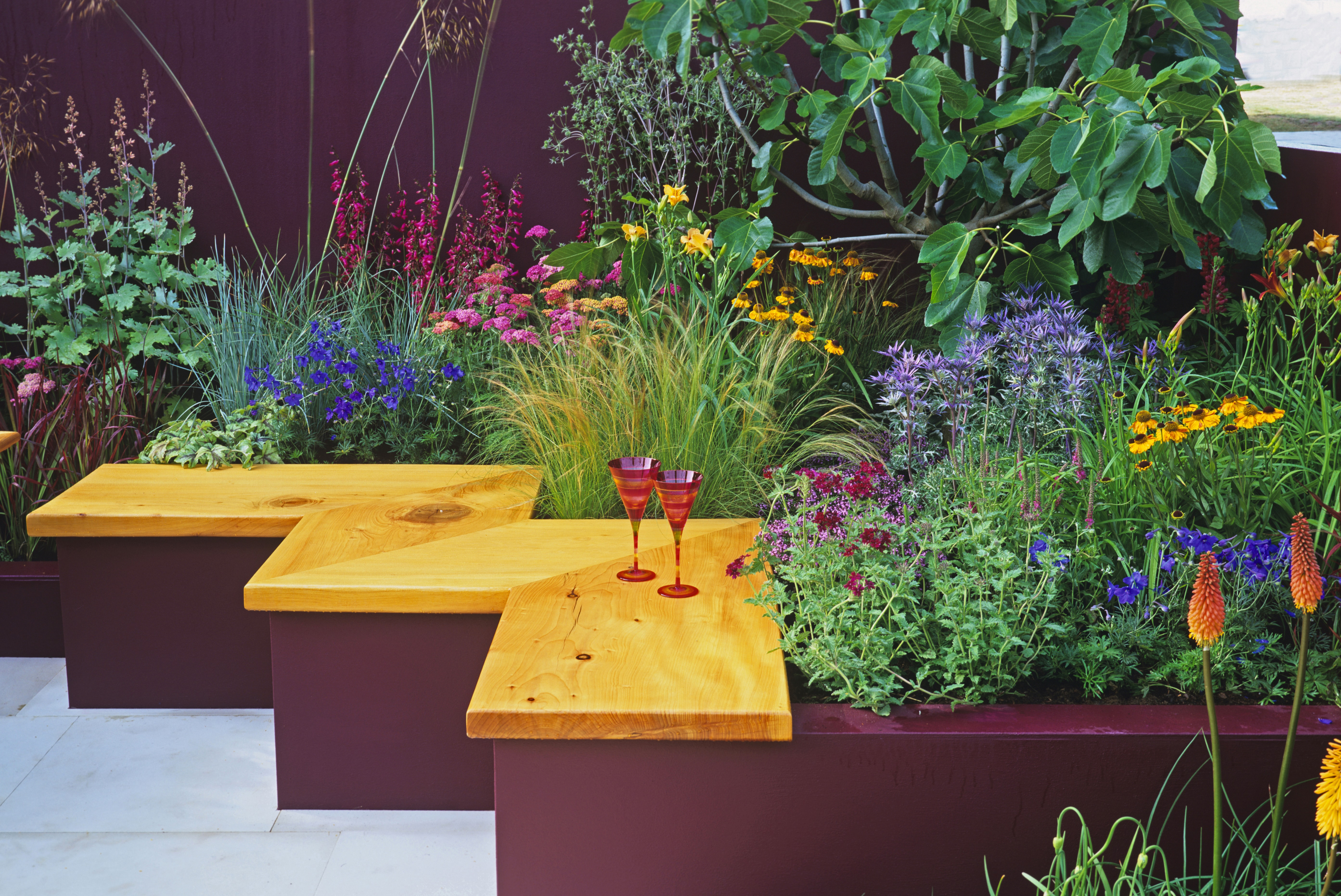 Colourful planting in 'Summer Cocktail' garden