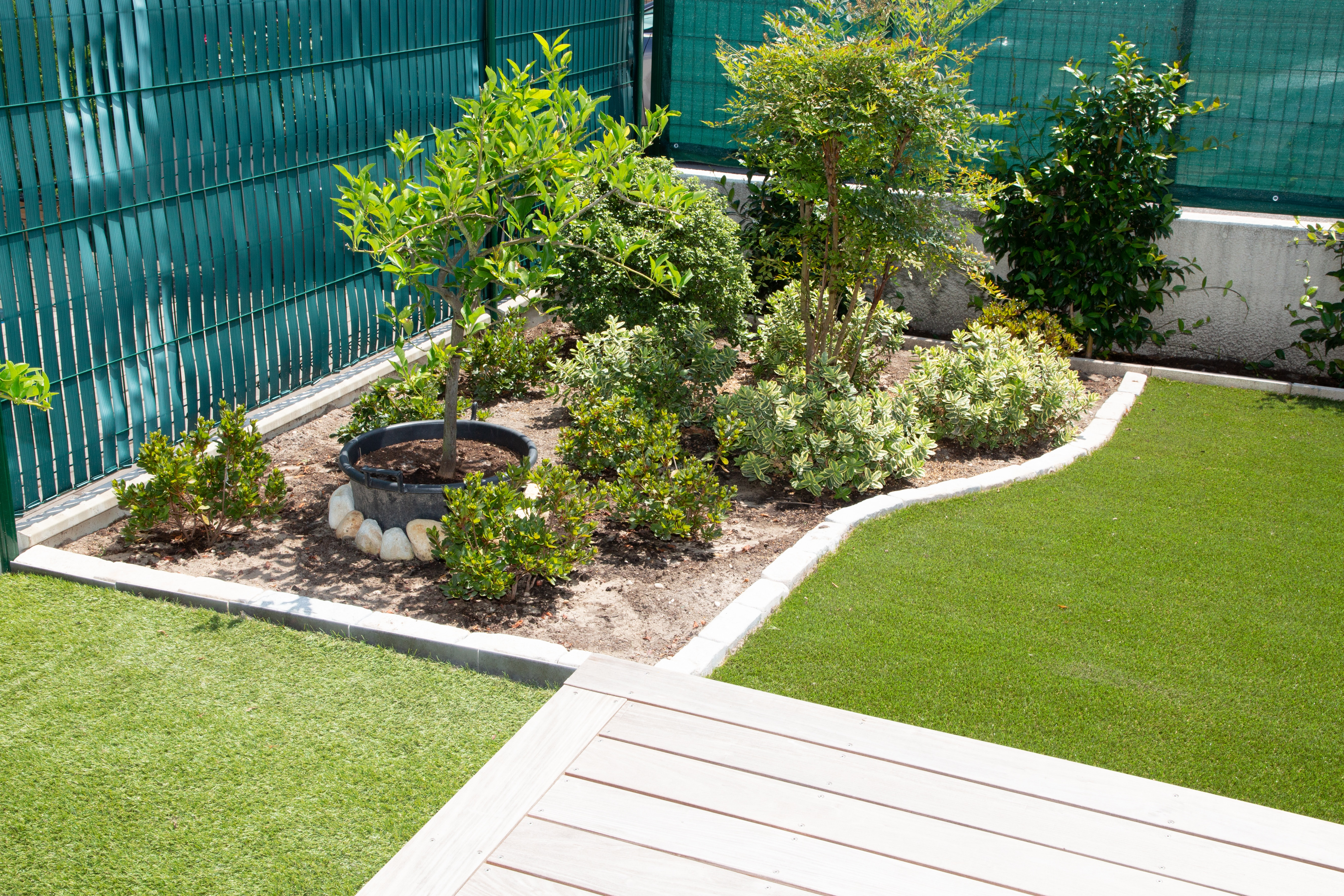 Beautiful natural plant of relax zone in modern garden design