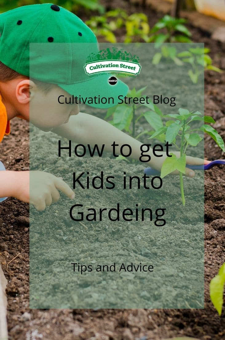 CultivationStreet Blog (9)