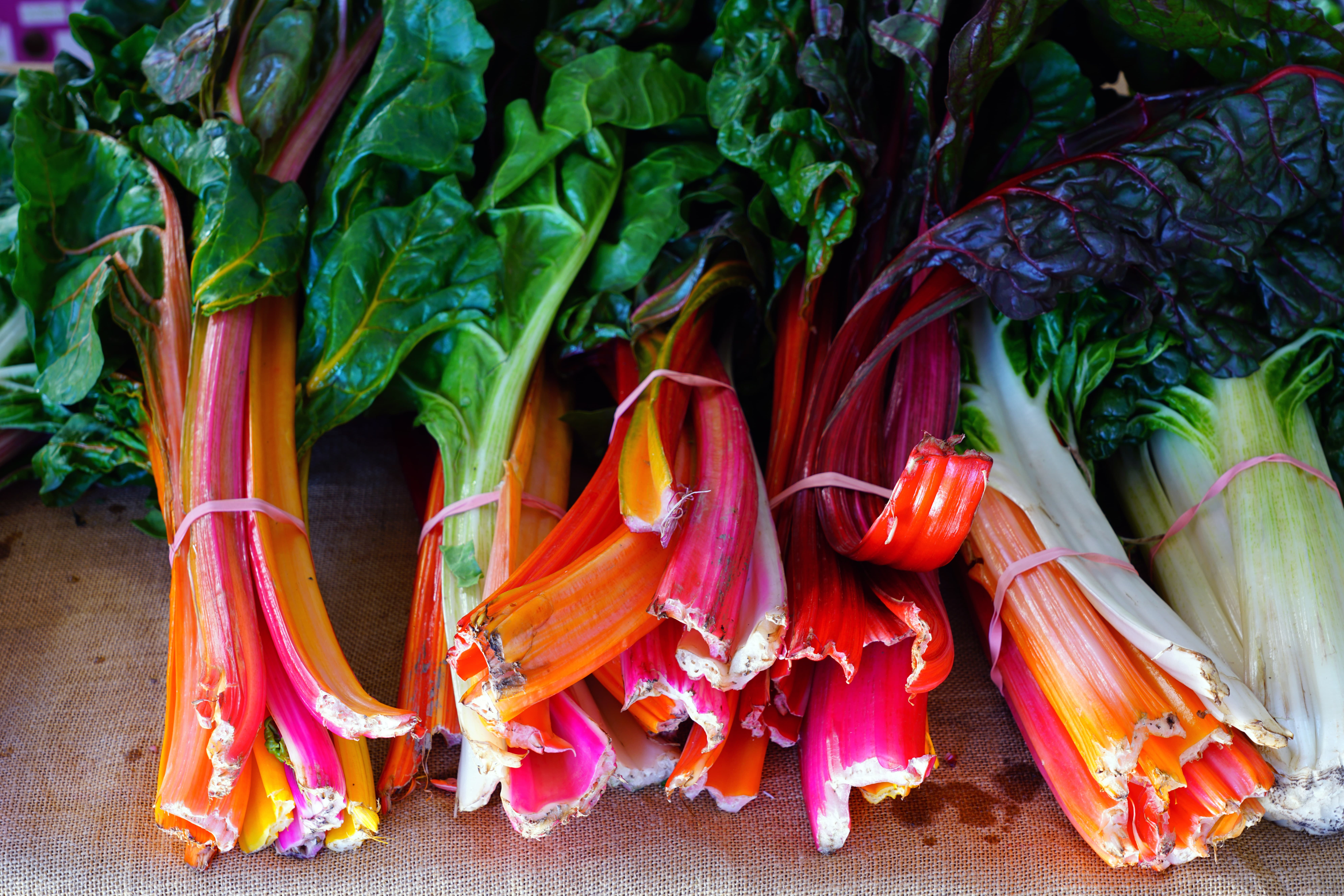 Bunches of rainbow Swiss chard with bright red  and orange stalks and green leaves for sale at a farmers market