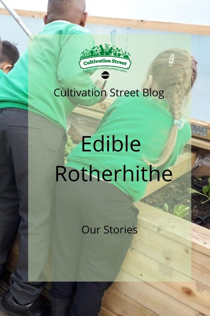 Copy of CultivationStreet Blog