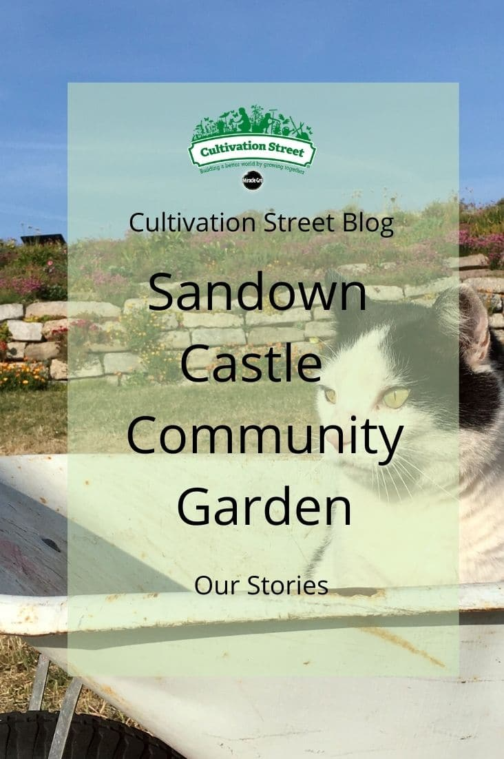 Copy of CultivationStreet Blog (2)