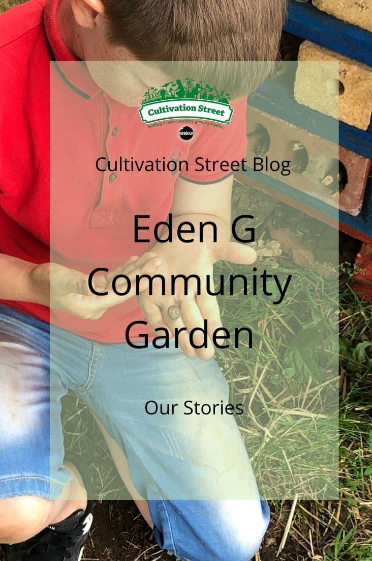 Copy of CultivationStreet Blog (2)