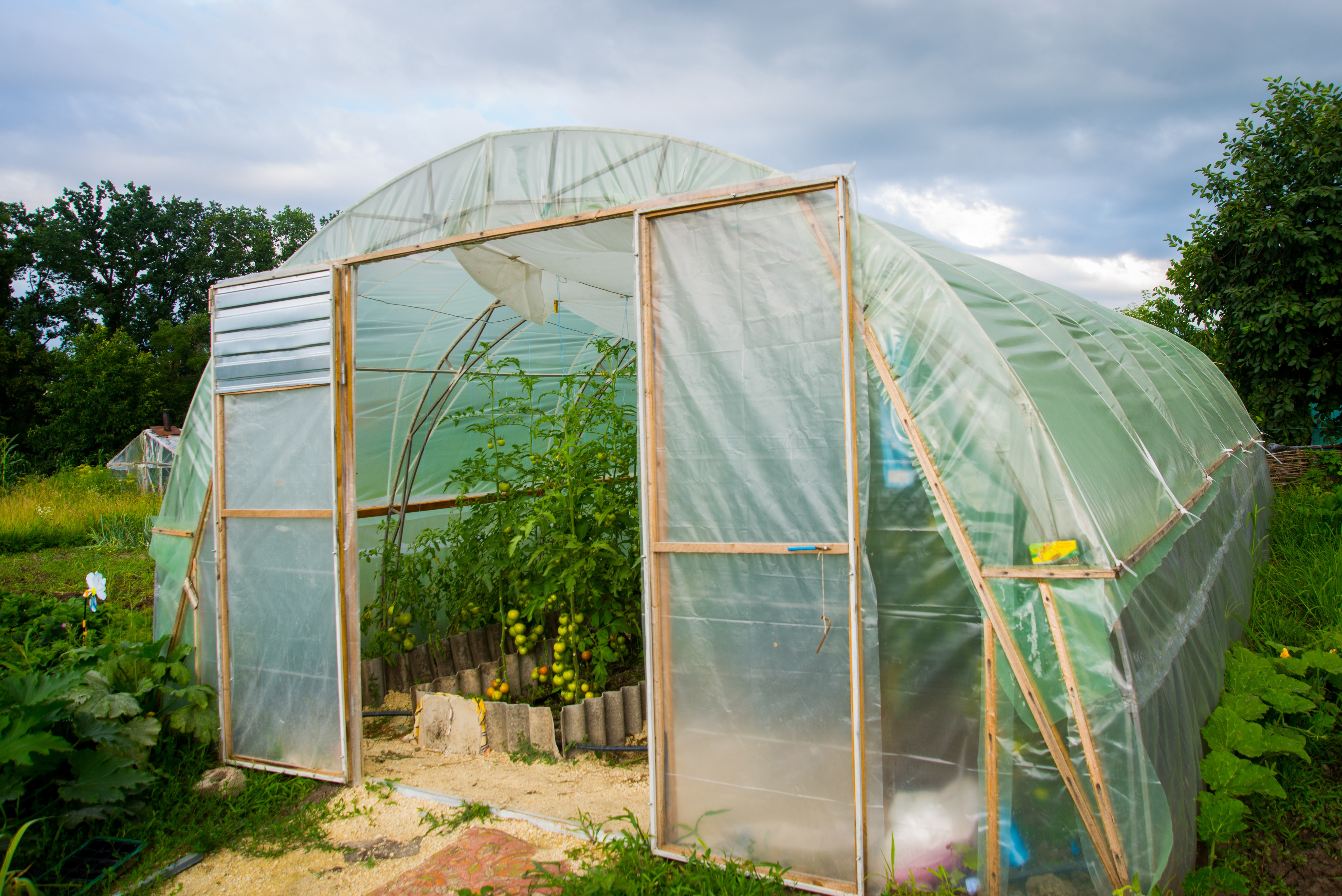 Big greenhouse in the garden summer