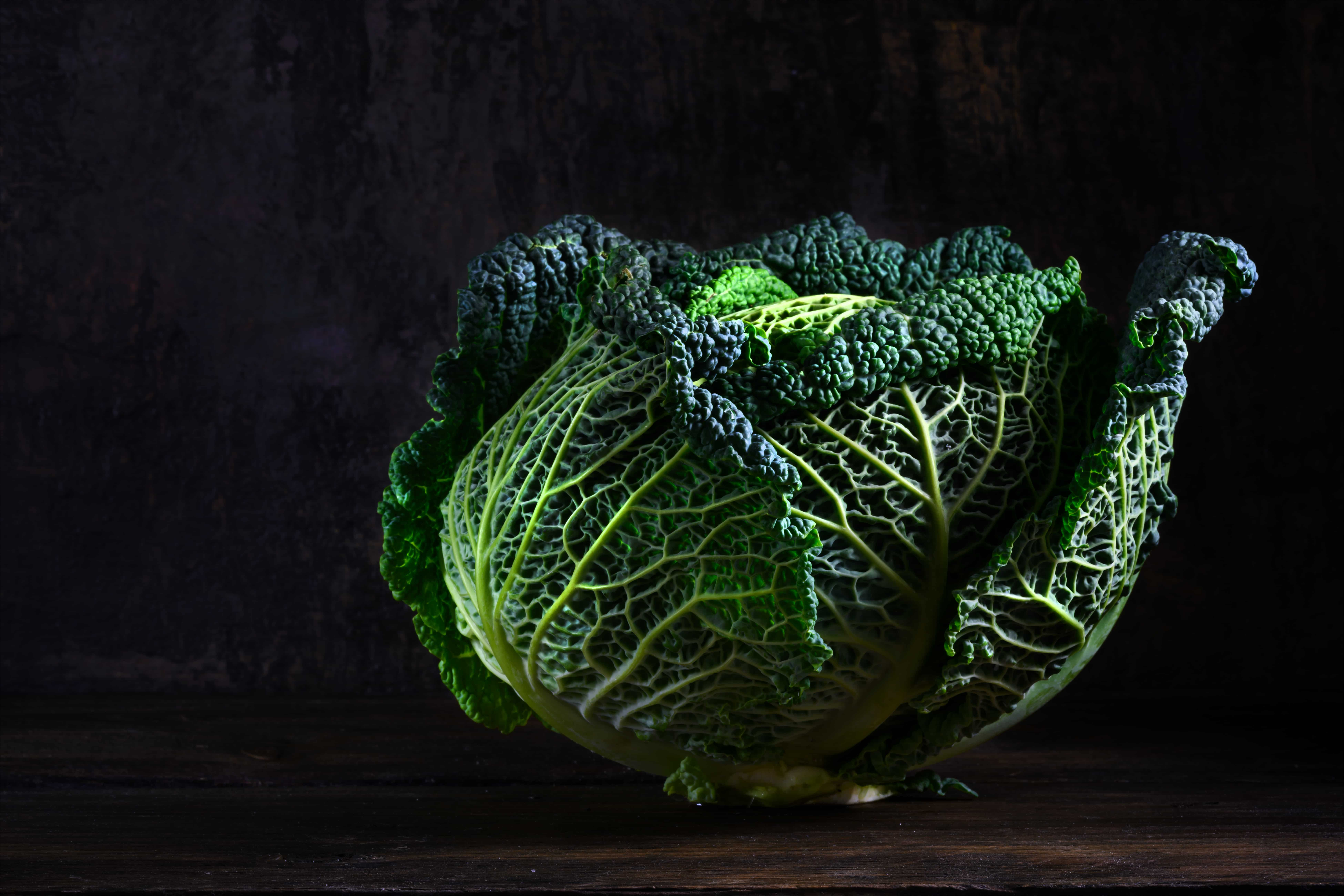 green savoy cabbage, a healthy winter vegetable in dramatic light on dark and moody rustic wood with copy space, selected focus