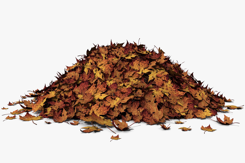 3d illustration of a leaf pile